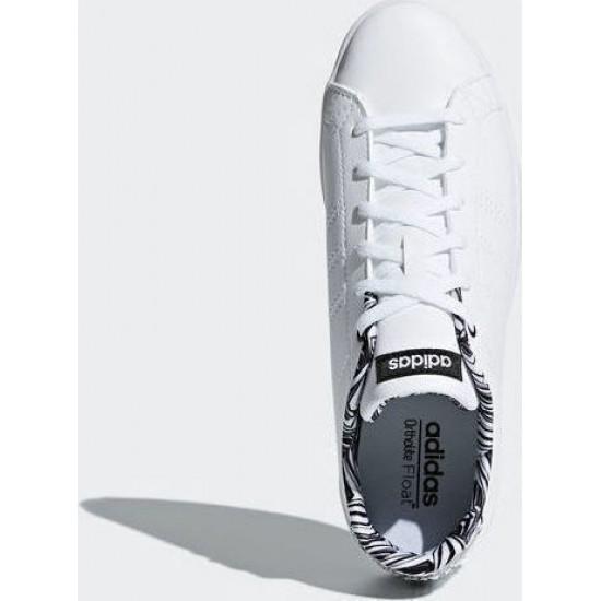 Adidas Advantage Clean QT DB1858